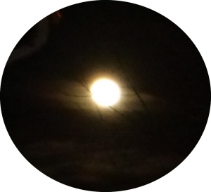 Full Moon in Leo 2015