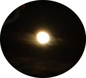 Full Moon in Leo 2015