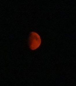 1st QTR Red Moon Aug 24, 2015