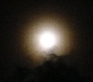 Almost Full Moon Aug 2015