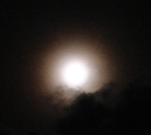 Almost Full Moon Aug 28, 2015