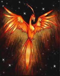 Phoenix and Stars