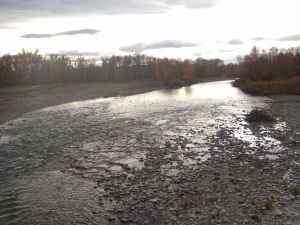 Sheep River, Okotoks, AB October 2015